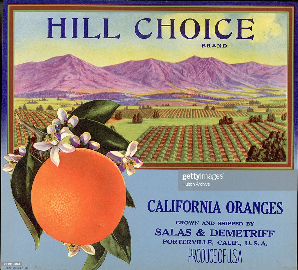 Hill Choice Brand Fruit Box Label
