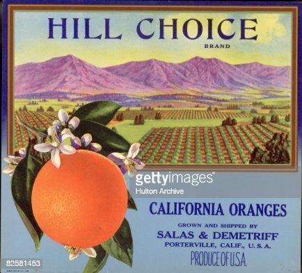 Hill Choice Brand Fruit Box Label