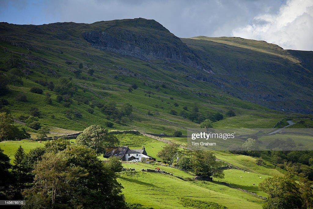 Hill Farm, The Lake District, UK : Stock Photo
