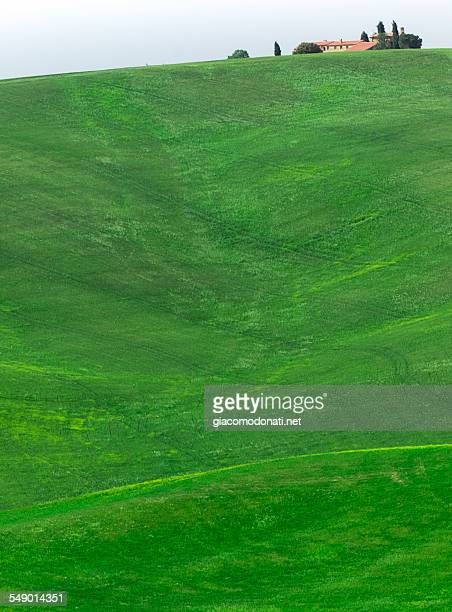 Hill in Val D'Orcia