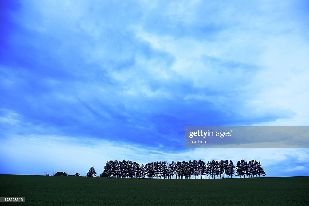 A hill : Stock Photo