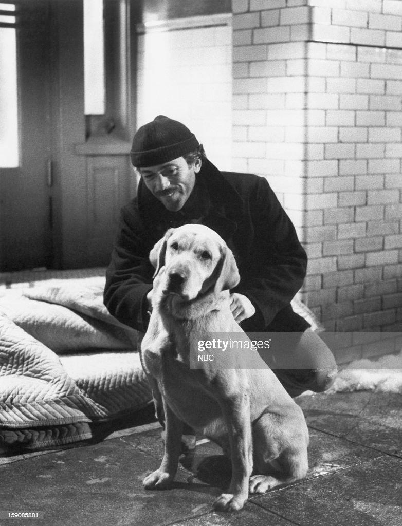 Hill Street Blues 'She's So Fein' Episode 15 Pictured Bruce Weitz as Det Mick Belker