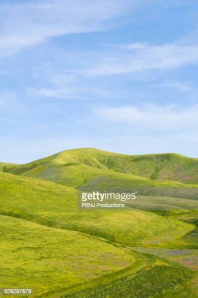 Hills and blue sky in rolling landscape