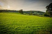Hills, North Wales, UK