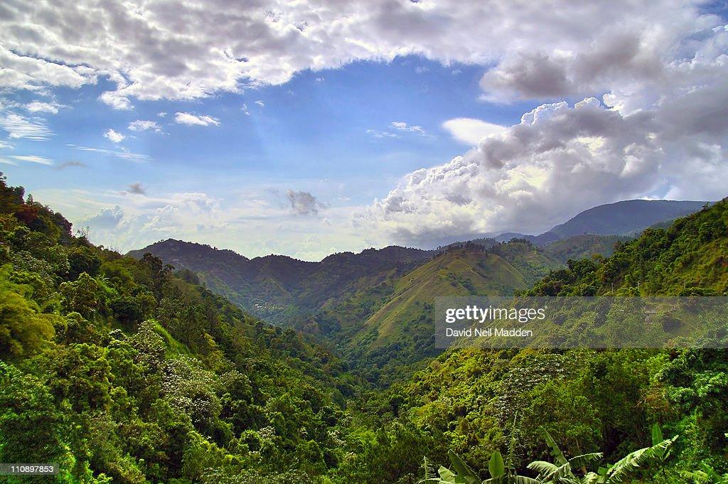 Hills of Jamaica