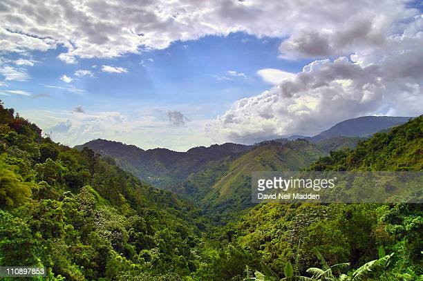Hills of Jamaica