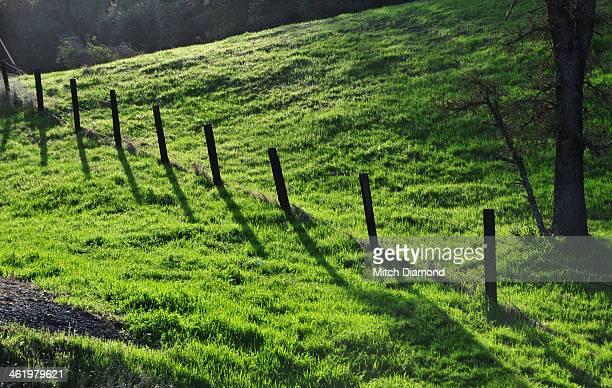 hillside fence