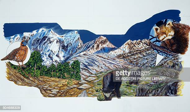 Himalaya environments and wildlife rhododendron forest and low vegetation Himalaya drawing
