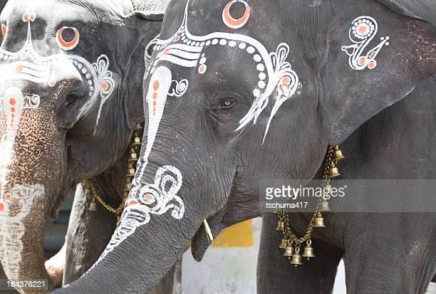 ヒンズー教の象