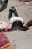 Hindu Pilgrim with Head Buried in Sand