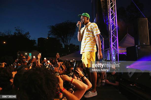 Hip hop artist Tyler The Creator performs during the 12th Annual Afropunk Brooklyn Festival at Commodore Barry Park on August 27 2016 in Brooklyn New...