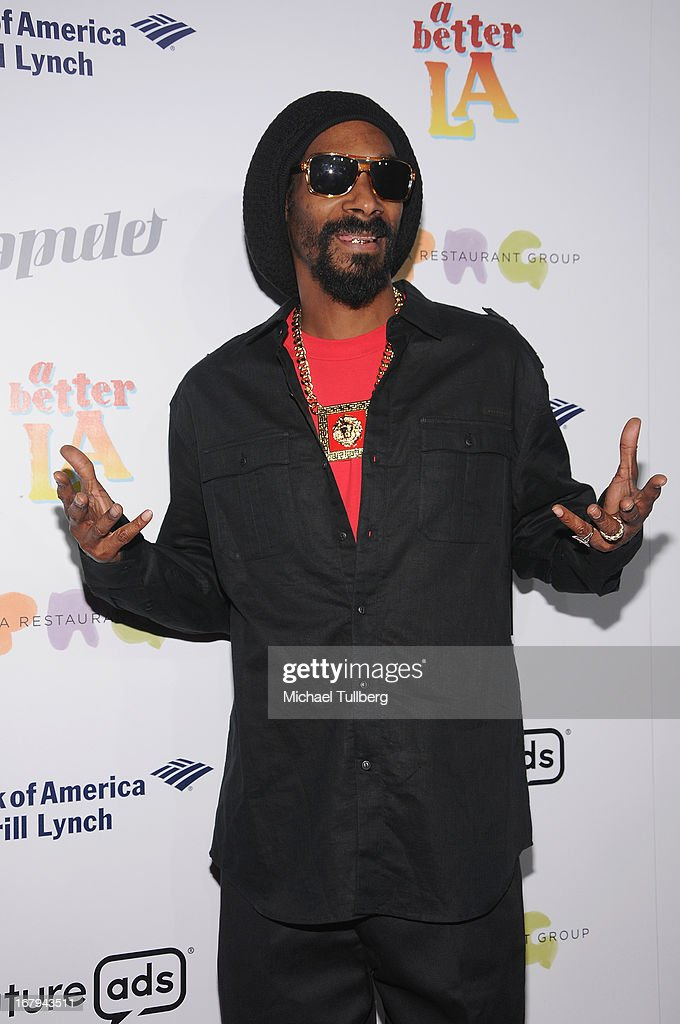 Hip-hop artist Snoop Lion attends A Better LA's 'An Evening With A View' Annual Gala at AT&T Center on May 2, 2013 in Los Angeles, California.
