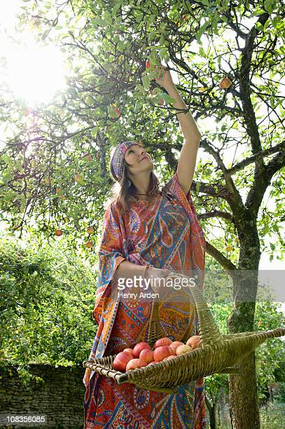 Hippy female picking apples