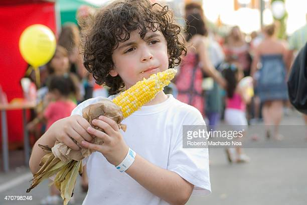WEST TORONTO ONTARIO CANADA Hispanic child with curly hair eating some corn on the cob during a street festival