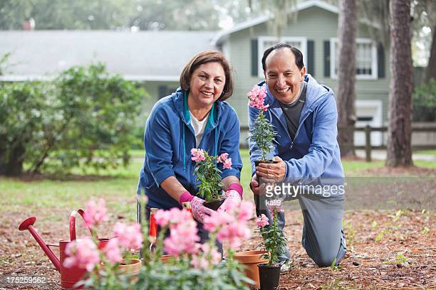 Hispanic couple gardening
