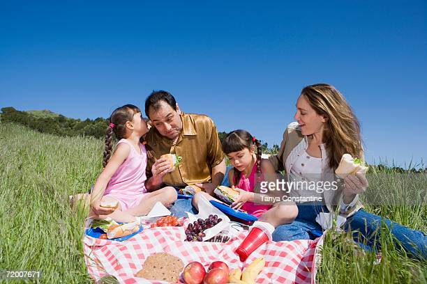 Hispanic family having picnic