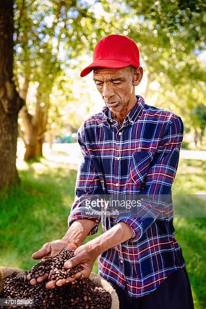 Hispanic agriculteur inspectant ses culture du café