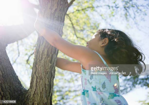 Hispanic girl climbing tree