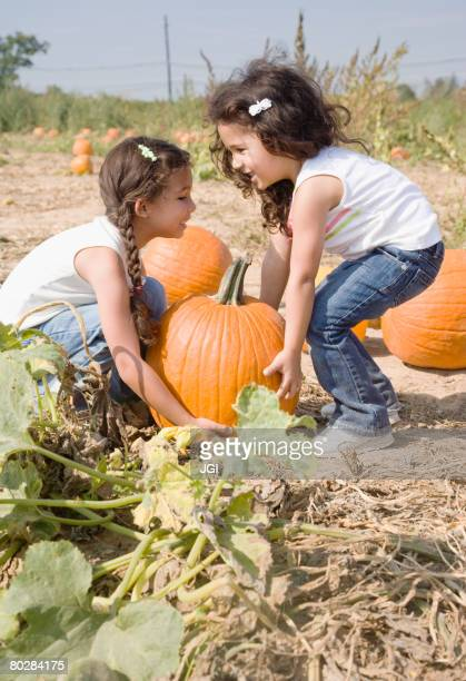 Hispanic sisters picking up pumpkin
