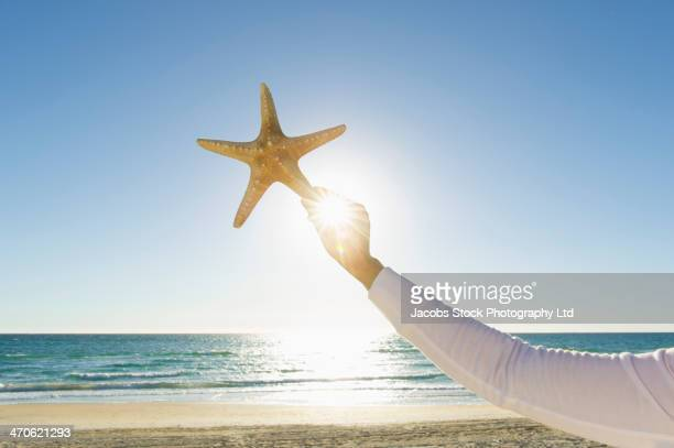 Hispanic woman holding starfish at beach