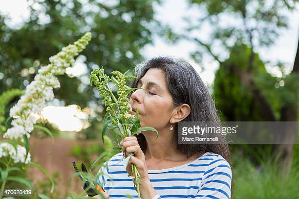 Hispanic woman smelling flowers in garden