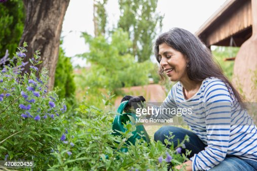 hispanic single women in garden This study examines housing quality among three groups of single-parent women: white, african-american, and hispanic three indicators of housing quality—crowding, affordability, and satisfaction—are.