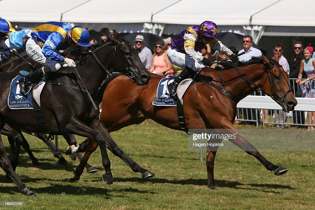 Historian ridden by Rosie Myers beats Lady Kipling ridden by Opie Bosson to the line in the 1600m Group I Harcourts Thorndon Mile during Wellington Cup Day at Trentham Racecourse on January 26, 2013 in Wellington, New Zealand.