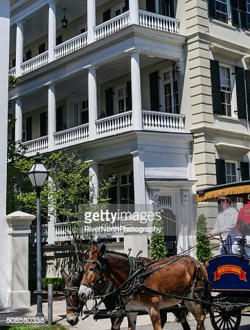 Historic Charleston, South Carolina : Bildbanksbilder