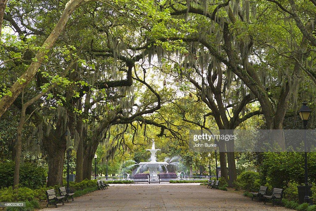 Historic Savannah GA