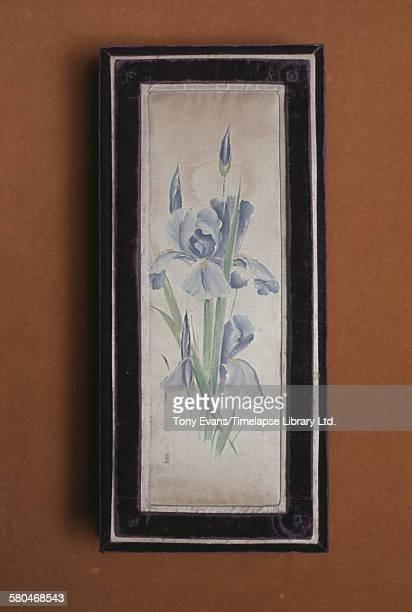 A historical Cadbury chocolate box featuring an iris circa 1970