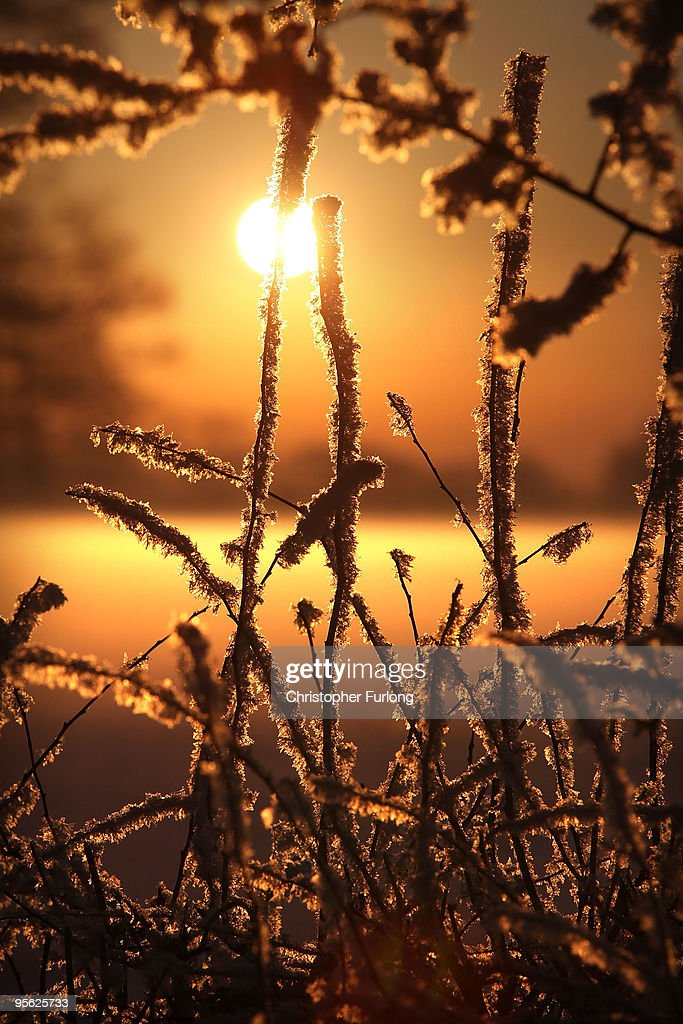 A hoar frost clings to trees as the sunsets over fields on January 7, 2010 in Knutsfod, United Kingdom. As temperaturers in Cheshire dropped to -15C overnight, low lying mist clung to the land and froze, creating a rarely seen hoar frost. The MET office confirmed that the Christmas period has been the coldest for 25 years with temperatures as low as -17C being recorded. Commuters and air passengers faced long delays today as the continued frigid temperatures gripped the country.