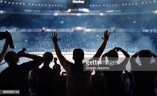 Hockey fans at stadium