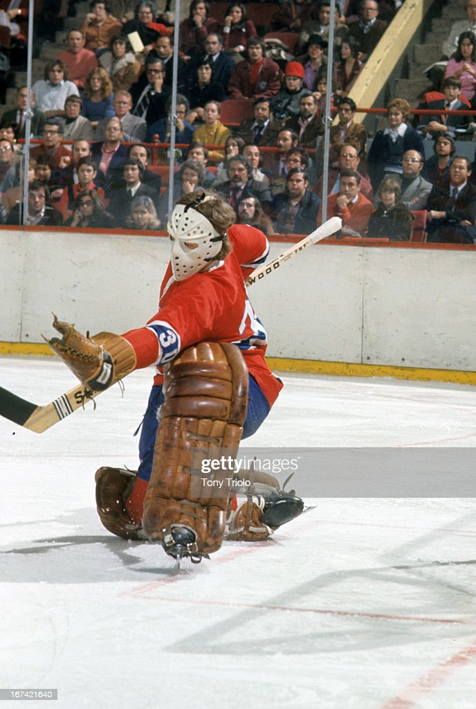 Montreal Canadiens goalie Wayne Thomas