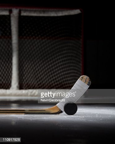 Hockey Puck, Stick, and Net