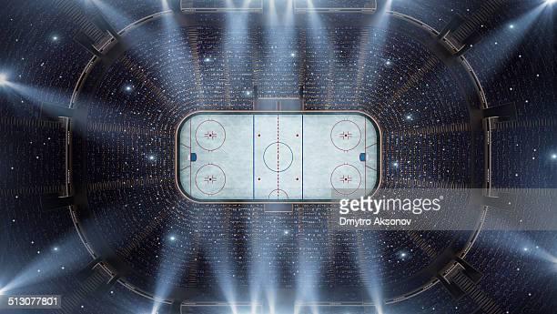 Estadio de Hockey de arena de pájaro VISTA PANORÁMICA