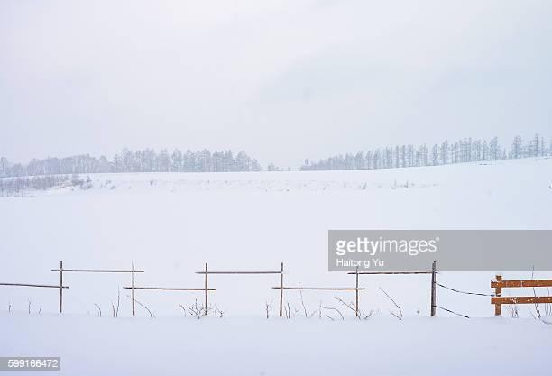 Hokkaido at winter