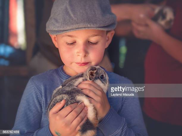 Holding a bunny - young boy