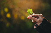 Holding a four-leaf clover