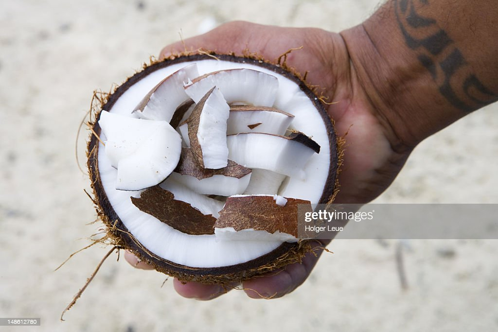 Holding freshly cracked coconut in hand at Fakarava Atoll. : Stock Photo