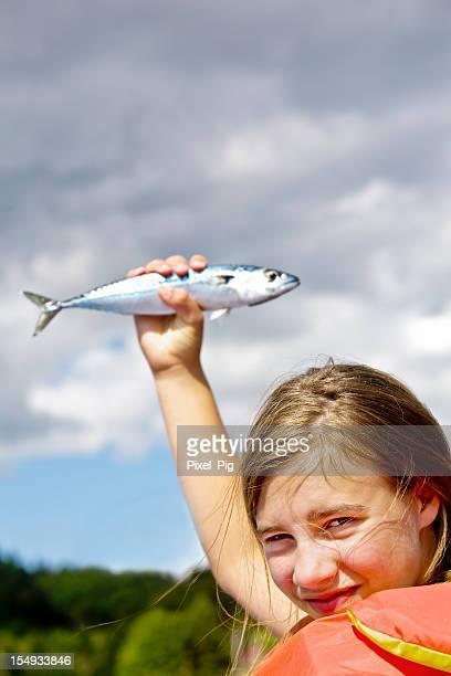 Caballa de retención de pescado en la recepción de Sky (caballa