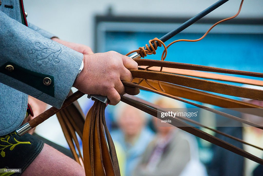 human hand holding many rein for horses