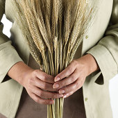 Holding sheaf of wheat