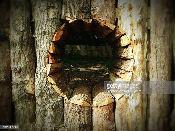 Hole In Wooden Fence