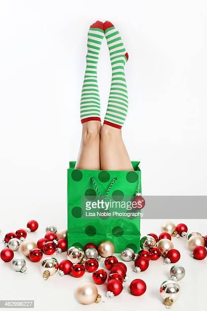 Holiday Bag and Christmas Ornaments