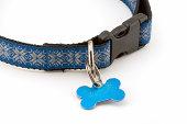 Holiday Dog collar