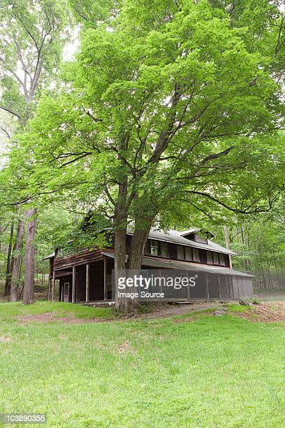 Holiday home exterior, rural scene