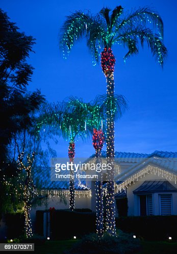 Holiday lights cover palm trees and eaves of house : Stock Photo