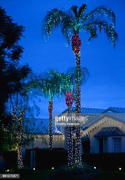 Holiday lights cover palm trees and eaves of house