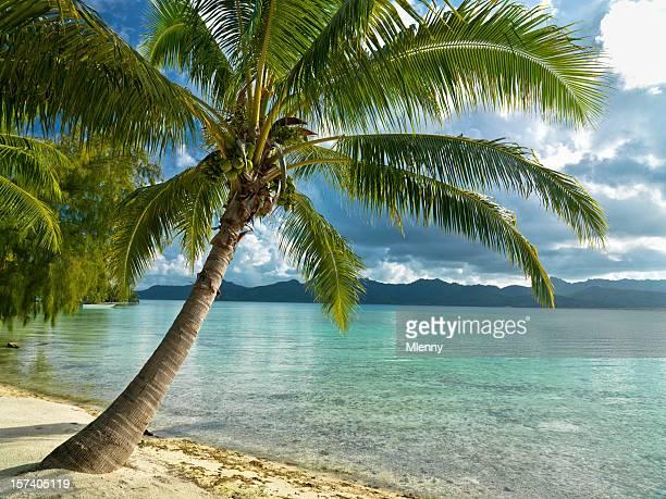 Paradiso delle vacanze