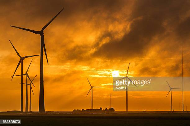Holland, Groningen, Eemsmond, Eemshaven, Wind turbines at sunrise